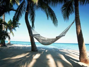 Hammock on coconut trees