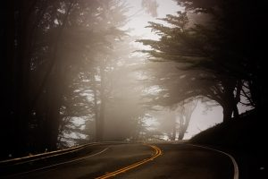 foggy winding road